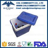 Logotipo personalizado alta qualidade que faz a caixa plástica do refrigerador para o presente