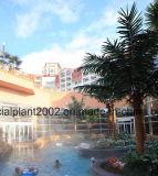 Palmier extérieur artificiel de noix de coco de palmiers de décoration de jardin