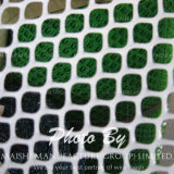 пластмасса формы 460GSM Hexagaonal прессовала сетка