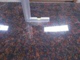 Верхние части/Countertops тщеты кухни/ванной комнаты гранита Verde Ubatuba зеленые