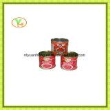 Molho enlatado de venda quente do tomate de China