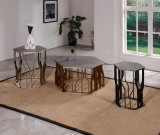 Минималист самомоднейший журнальный стол Tempered стекла типа
