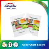 装飾のコーティングのための良質カラーカード