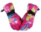 Перчатка лыжи популярной зимы Windproof теплая держа