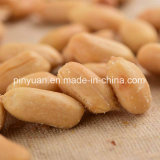 Bulk Package에 있는 소금에 절이는 Peanuts Without Skin
