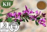 Extrato natural puro /Quercetin de Capitata do Lespedeza; Flavonas 6% por UV
