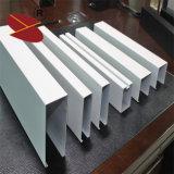 Techo suspendido aluminio del bafle para la exposición pasillo del coche
