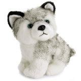 Giocattolo del cane del husky della peluche, giocattolo su ordinazione della peluche