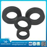 Permanenter kundenspezifischer Größen-Block-Ferrit-Magnet