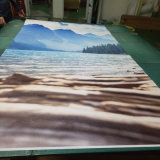 Papier peint imperméable à l'eau personnalisé de peintures murales de mur de vinyle de qualité de modèle