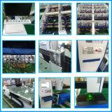 Laser dentro da máquina de gravura com alta velocidade