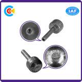 Pin capo cilindrico non standard della coda di esagono del ferro