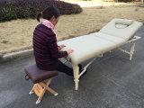 Mt-009-2W Mesa de masajes de madera y la tabla de belleza