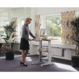 경제와 능률적인 나무로 되는 사무실 테이블 컴퓨터 책상 워크 스테이션