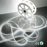 Het hete Neonlicht van de Strook 50m/Roll 5050 van Kerstmis van de Hoogste Kwaliteit van de Verkoop Lichte