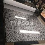 strato decorativo del piatto dell'acciaio inossidabile 201 304 316 con rivestimento acquaforte dello specchio 8k