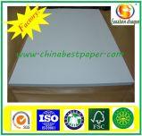 Papel de tecido branco 25GSM da intercalação para a fábrica do vestuário