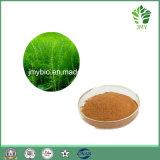 Entzündungshemmender Hemostasis 100% natürlicher Equisetum Arvense Auszug (Silikon 7%, 4:1 ~20: 1) Hilfe zu Decongest die Haut