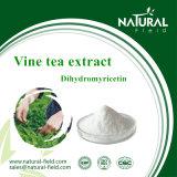 100%の自然なプラントエキスのツルの茶エキス98%純度Dihydromyricetin