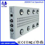 LED는 가벼운, 대리 HPS/Mh 1000 와트 1500W 2000W 의 45mil 옥수수 속 칩 가득 차있는 스펙트럼에 증가한다