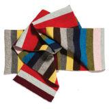 Embroiderey (JRI007)の冬のしまのある帽子そしてスカーフ