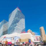 Comitato di alluminio della facciata per la plaza di Wanda con la specifica personalizzata