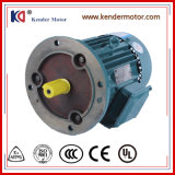 Yx3-80m1-2 고능률 AC 전기 (전기) 모터