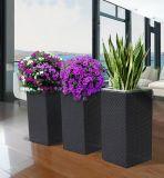 Quadrat galvanisierte Blumen-Potenziometer PET Rattan-Blumen-Potenziometer-Zahnstangen-Rattan-Möbel