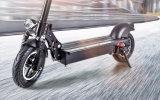 elektrisches Fahrrad der Legierungs-600W mit 48V/20ah