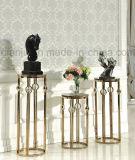 Moderner einfacher Art-Edelstahl-Möbel-Pflanzenstandplatz (DF1002)
