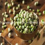 Кудрявый и Yummy естественные горохи Wasabi зеленые для сбывания