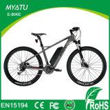 スロットオプションの22インチの先カーボンファイバーの電気自転車