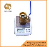 Kogelklep van de Zuurstof van de hoge druk de In werking gestelde Dn32 Hefboom