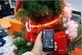 IP65 고전압 크리스마스 3wire 편평한 수직 LED 밧줄 빛