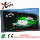 RGB P10는 전시를 광고하는 LED 게시판 스크린 모듈을 방수 처리한다