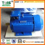 courant alternatif Induction Electric Motor de 1HP-340HP Y2 Series Three Phase