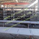 Hochleistungs- Steel Shape Expansion Joint (Sold nach Singapur)