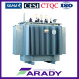 Oil in drie stadia Immersed 50Hz/60Hz Low Loss Wounded Core Transformer 250 kVA