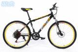 최신 판매 녹색 성숙한 산 자전거 (MTB-36)