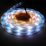 12V IS Controlled Flexible SMD5050 Digital LED Strip Light mit Cer, RoHS
