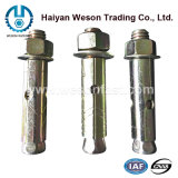 Ancre de douille d'ancre de cale d'ancre d'expansion d'ancre d'acier inoxydable
