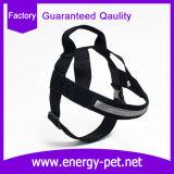 موثوقة محبوب ممون كلب أمان صدرة أسلاك مهمّة