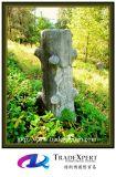 묘지, 나무를 가진 묘석을%s 나무 작풍 성격 화강암 기념물