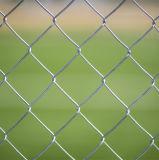 Noi rete fissa della maglia di collegamento Chain per il deposito domestico del giardino