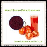 Licopeno natural el 5% el 10% del extracto del tomate de la alta calidad