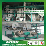 Righe del granulatore dell'attrezzatura di produzione della pallina della paglia per la pianta di energia della biomassa