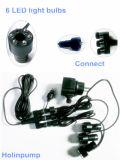 6つの球根(HL-FK003LED)が付いているプラスチック軽い噴水