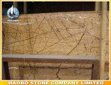 直接卸し売り熱帯雨林の大理石の平板の工場