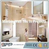 Popular de mármore de creme importado da telha da parede usado no banheiro/cozinha interior Flooor & na parede/fachada ao ar livre