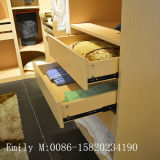 Camera da letto calda Walk di Sale Wooden Veneer in Closet